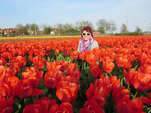 me in tulips