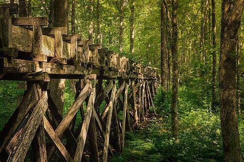 virginia woods trough mabrymill exhibitionoftalent masterclassexhibition kurtpeisergallery