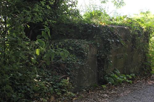 Stondin Laeth ger Tyncwm, Capel Bangor