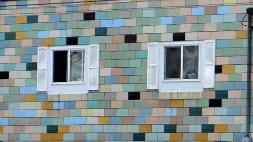 DSC04500 windows  alton 270713