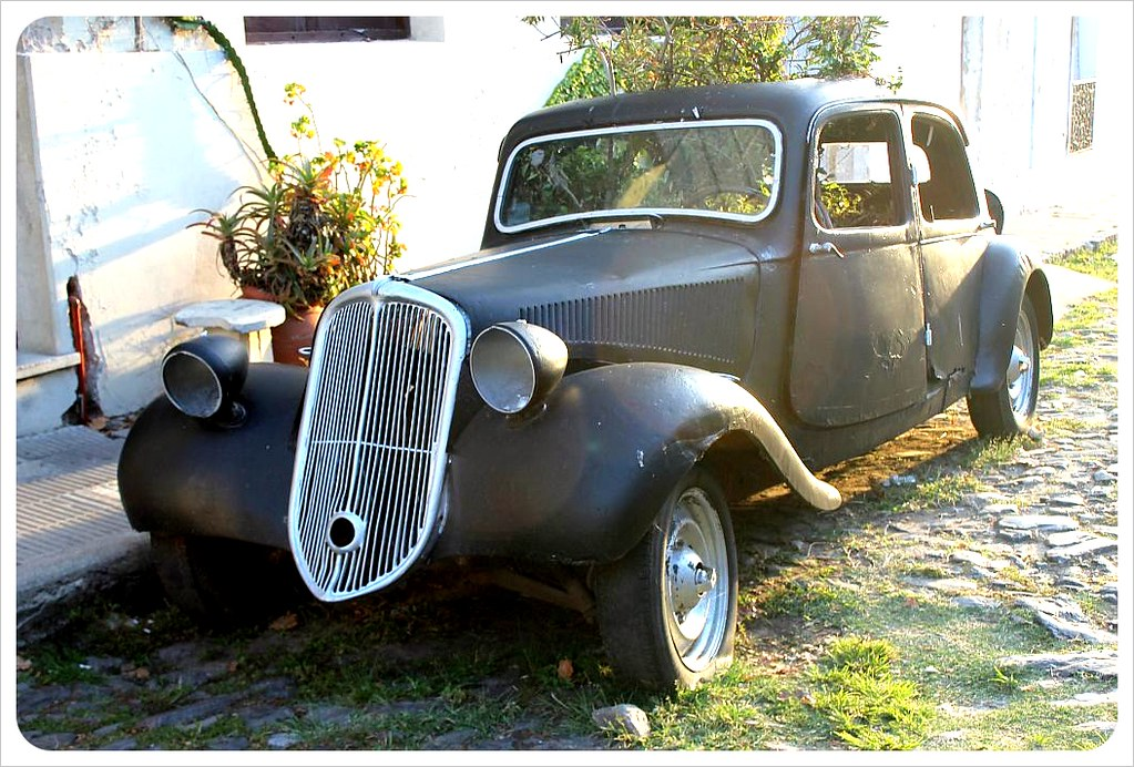 uruguay vintage Citroen Traction Avant with tree