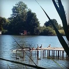Puttelange aux lacs