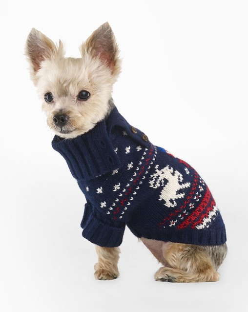 Ralph Lauren Reindeer Dog Sweater