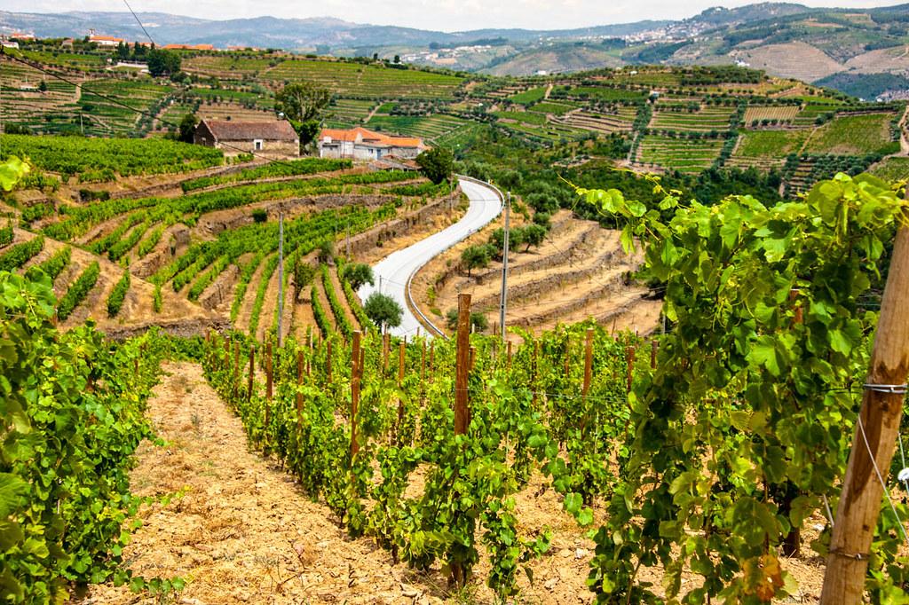 Portugal Landwirtschaft