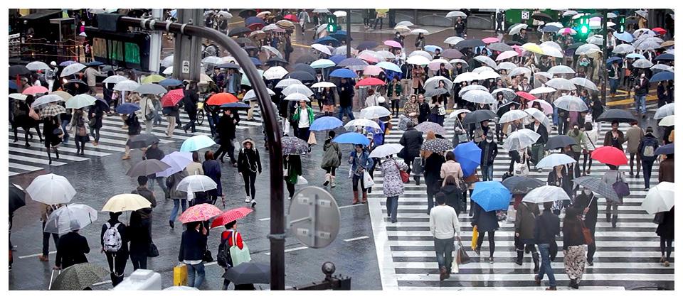 Carrefour de Shibuya sous la pluie, Tokyo - Japon