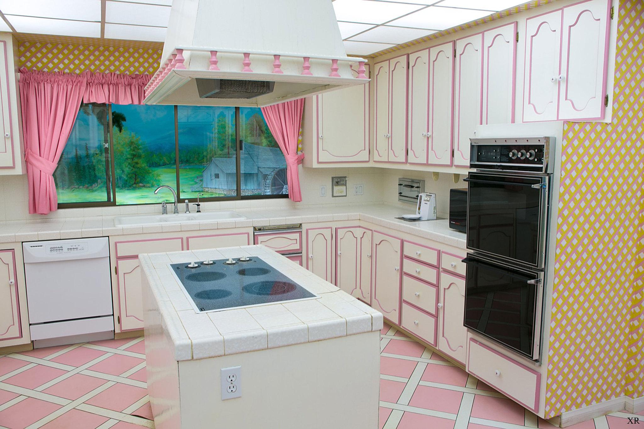 Delta Moen Or Kohler Kitchen Faucet