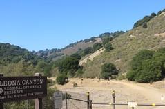 Leona Canyon Walk - Oct. 2013