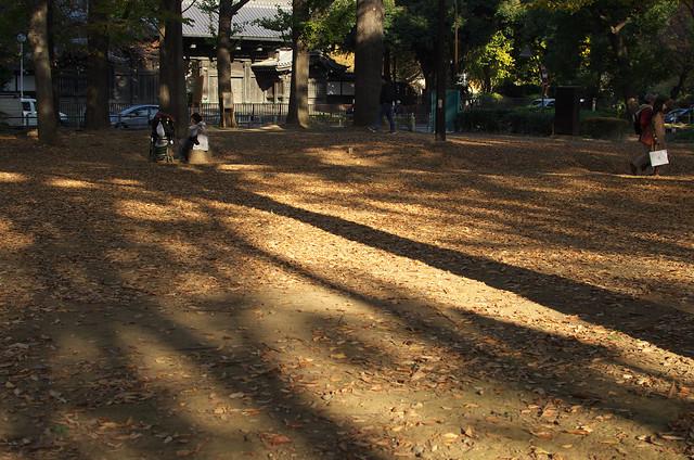 秋の谷中フォトウォーク 2013年11月24日
