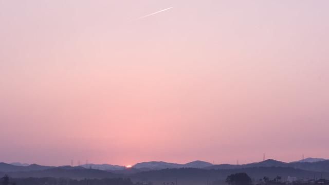 写真_早朝の飛行機雲