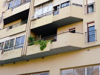 Geräumige Terrasse mit viel Grün