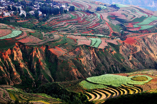 Dongchuan  Red earth terraces  東川 紅土地  落霞溝