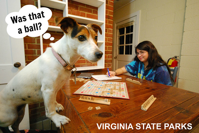 Junie B plays scrabble with her family in a cabin at Westmoreland State Park