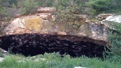 Stuart Bat Cave - Bracketville, TX