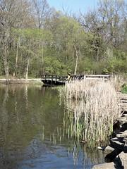 Herrick Lake 2017