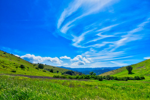 grass santateresacountypark sanjose outdoor clouds trees plant afternoon mountains horseriding santaclaracountyparks park hiking trail sky green ca california blue santacruzmountains unitedstates us