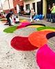Colores de Semana Santa #Guatemala #Paralelo17N #AlfombrasGT