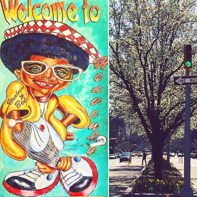 #Harlem #Spring #Nyc #WalkNYC #manhattan #fredrickdouglasblvd 🌸🎶 #sugarhill