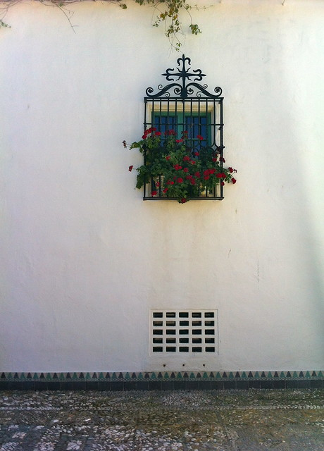spanish tile & geraniums