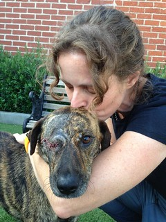 Zeus with his surgeon - Dr. Erin Wilson