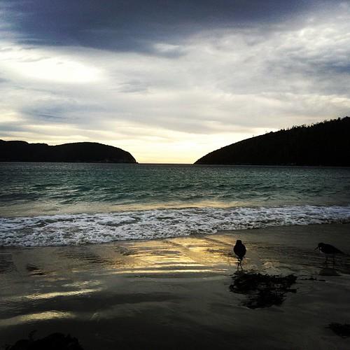 Tasmania11