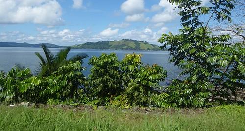 Papou13-Jayapura-Sentani-ojek-bemo (66)1