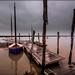 La Sèvres, côté atlantique, à Charron ©Didier Hannot Photography