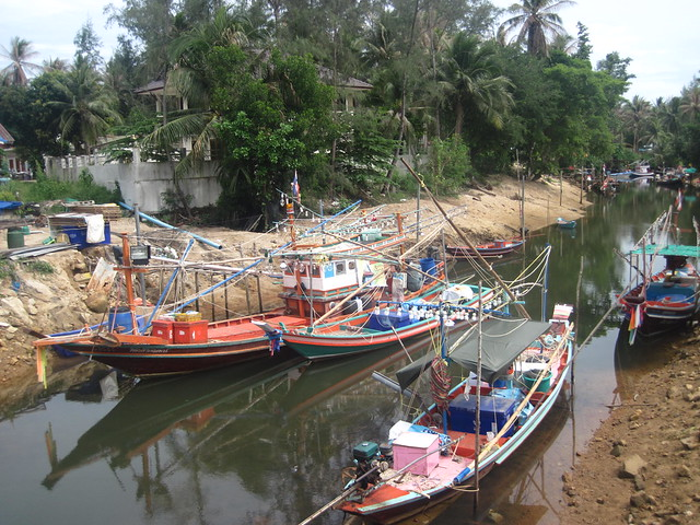 thai2013_293phangan