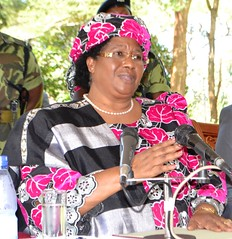 Malawi's President Joyce Banda says women must be empowered and have to be actively involved in all decisions related to their health and well being. Credit: Mabvuto Banda/IPS