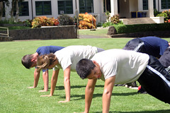 physical fitness, lawn, training,