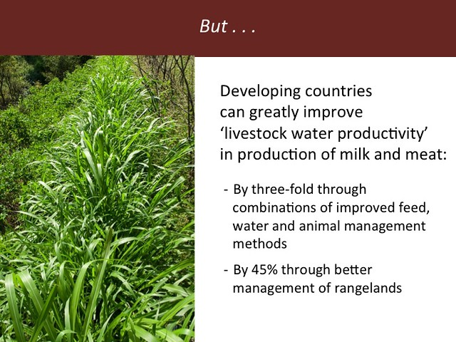 Feeding the World in 2050: Slide 32