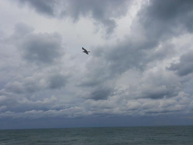 над седой равниной моря