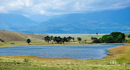 la colombia vieja tame suramerica arauca lagunalavieja llanosorientaleslaguna