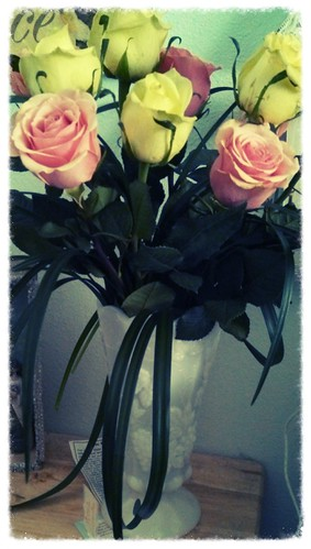 Roses from someone special