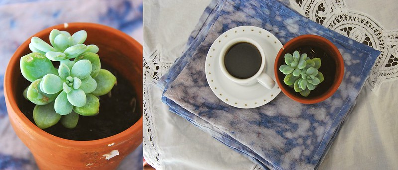 DIY indigo dye tea towels