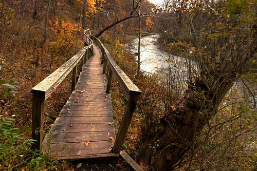 park autumn trees usa ny newyork fall dan nature colors leaves creek landscape hiking scenic foliage nys linear rochesterny westernnewyork wny penfield irondequoit monroecounty dangler dandangler channingphilbrickpark
