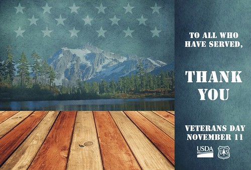 To All Who Have Served, Thank You. Veterans Day. November 11. (Illustration by Mary Jane Senter/ThinkStock and U.S. Forest Service photos)