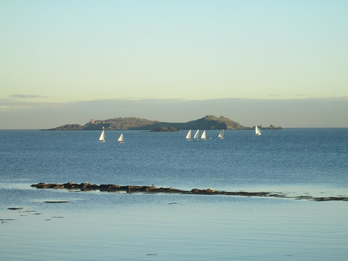 yachts  in the Firth of Forth