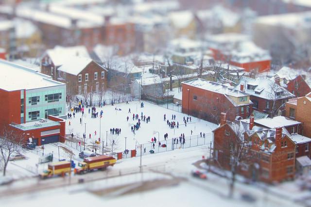 Snow Fun in Toy-ronto's Mini School District