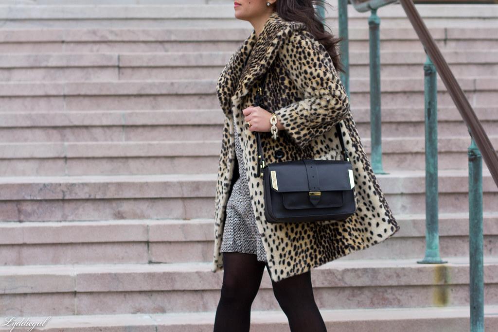 leopard and tweed.jpg