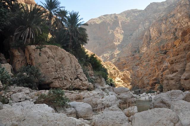 Wadi Shab (15)