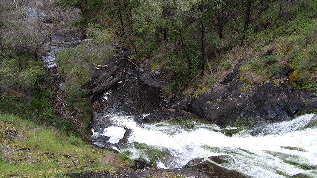 Day 31: Beedelup Falls