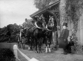 British carriage and horses, 1904