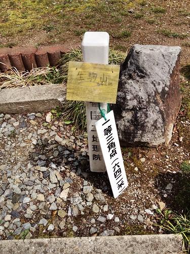 The Peak of Mt. Ikoma