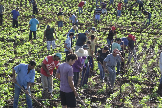 Assentados contribuem para o aumento do PIB do município - Créditos: Wellington Lenon