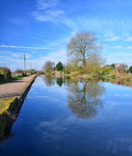 Bridgewater Canal month three March