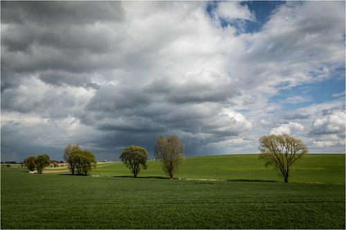 clouds .