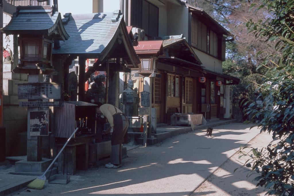 Oinari-san of today