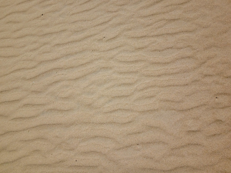 beach-sand-in-tasmania