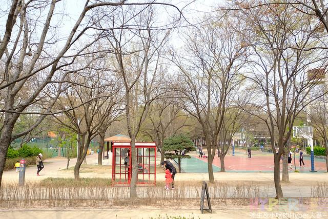 首爾林seoul forest (10)