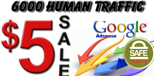 6000 Real Human Traffic From all Around the world all Adsense Safe